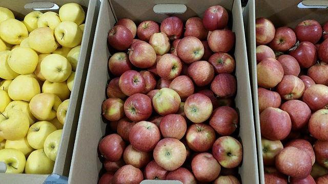 Three different types of apples in their boxes on a table at the Dawson Creek Farmers' Market.