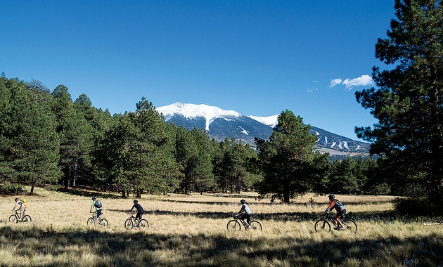 5 bikers on Peak-a-View trail in the Flagstaff Nordic Center, Arizona.