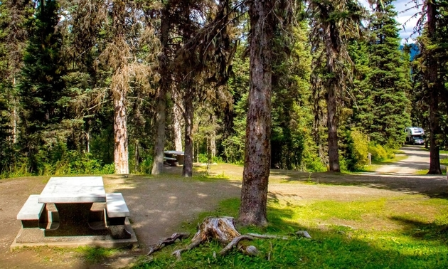 campground in Barkerville BC