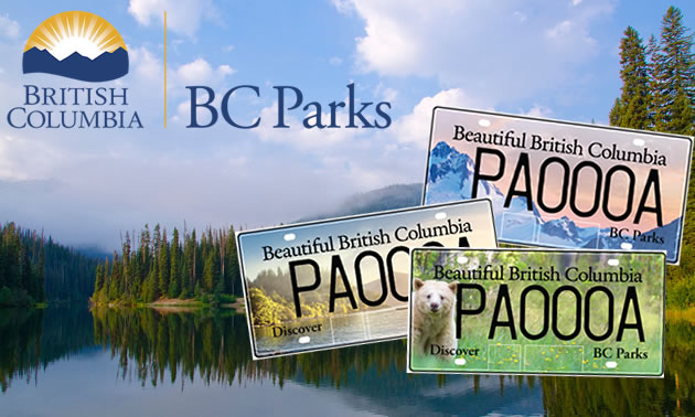 Fleet Vehicles For Sale >> New BC Parks themed license plates to be issued | RVwest