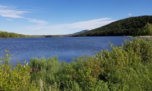 Beauvais Lake Provincial Park, Alberta