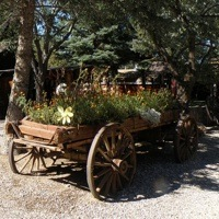 The entrance of Beaver Canyon Campground has an old wooden wagon full of flowers.