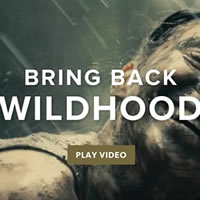2 boys walking through a shaded forest with their arms over each other's shoulders. The words Bring back the Wildhood have been overlayed the photo.