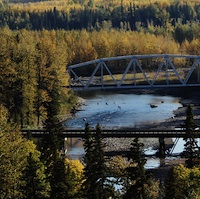 View of bridge and rail crossing in autumn colours at Pine River near Chetwynd, B.C.