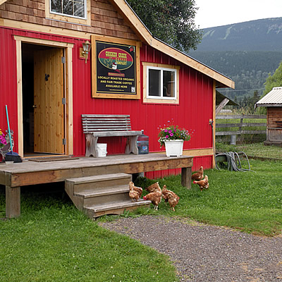 A red coffee roasting shop with chickens in the front yard.