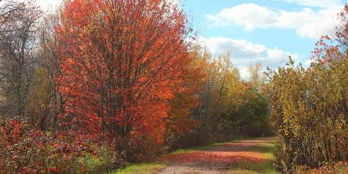 Confederation Trail, Prince Edward Island