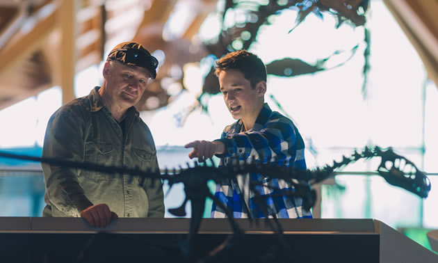 Two people studying dinosaur skeleton