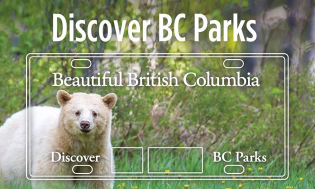 Discover BC Parks licence plate.