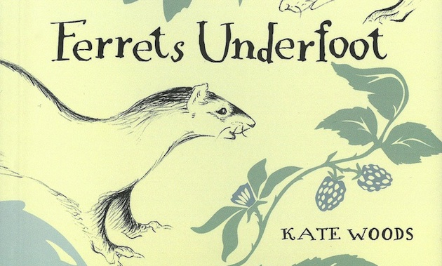 book titled Ferrets Underfoot