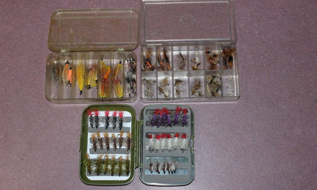Selection of trout flies.