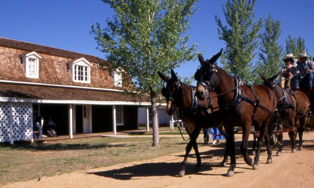 camp verde men For a military post, fort verde was only active for a handful of years the 19th-century fort complex was built on its current location in what's now downtown camp verde starting in 1871 after two other sites proved unsatisfactory.