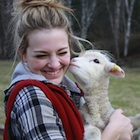 April is lambing season at Aveley Alpine Ranch.