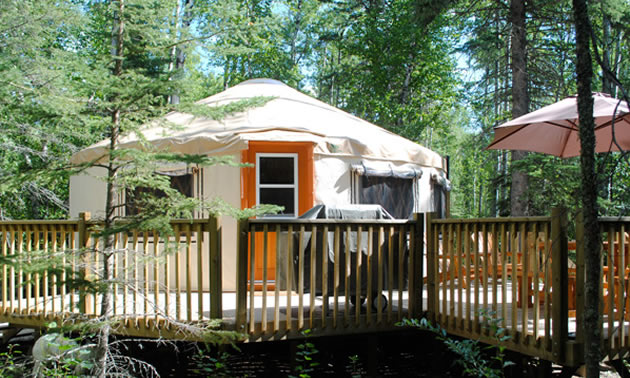 The year-round yurt lodgings at Flora Bora, less than a two-hour drive from Saskatoon, are nestled in 30 acres of forest and near beaches.