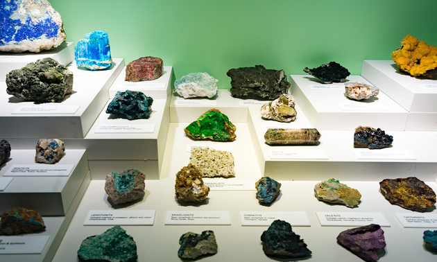 mineral samples on a display table