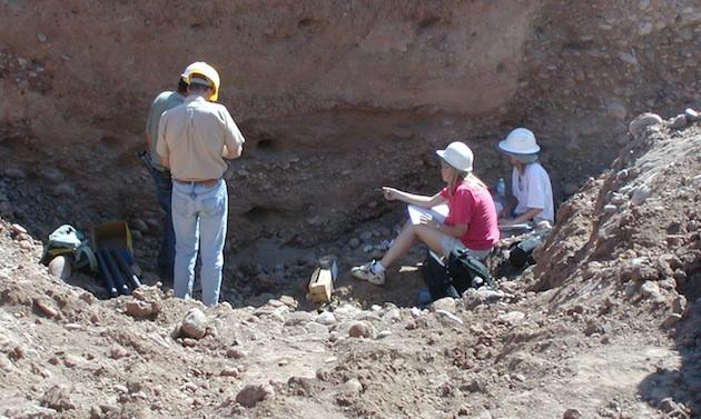Archeologists digging