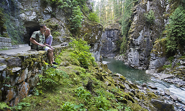 people sitting by a wooded area and waterfall