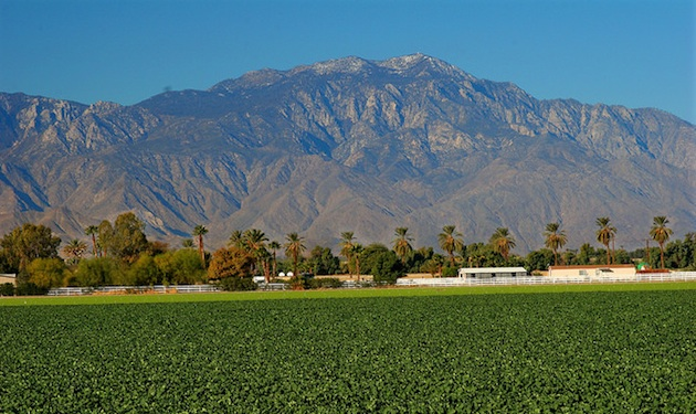 Field crops and date trees create the foreground for the Indio Hills Mountain Range in Indio, California.