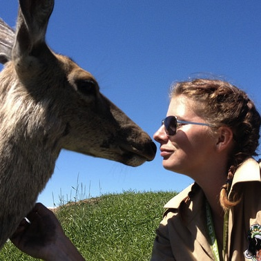 Trainer Serena Bos with Mule Deer, Mari Jegou at Discovery Wildlife Park.