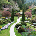 looking down at a lush garden with pathways, trees and colourful flowers