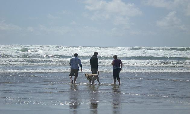 people on the beach in manzanita, oregon