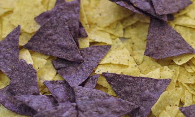 Multi-coloured tortilla chips are our family's favourite.
