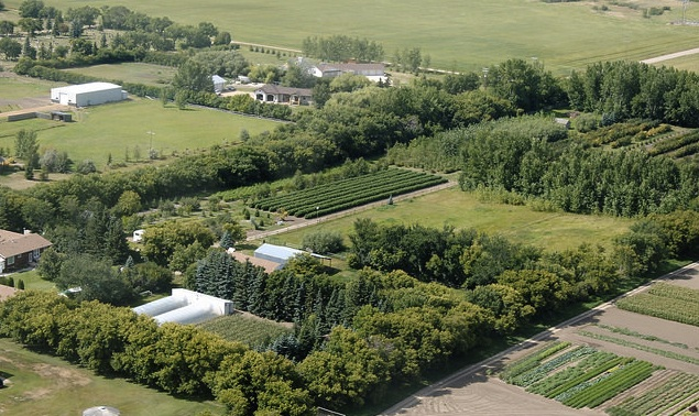 Local Fresh Produce In Outlook Sk Rvwest