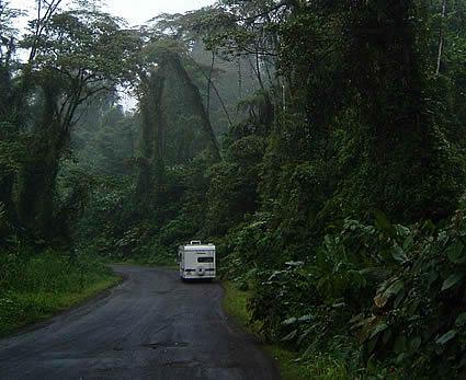 Montiverdi Cloud Forest, Costa Rica.