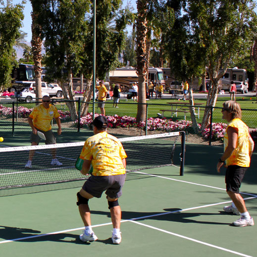 Participants in the Sunshine Invitational Charity Event in Indio, California, play pickle-ball to raise money for cancer research.