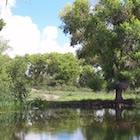 Twin Pond in San Bernardino National Wildlife Refuge