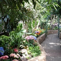 The Regina Floral Conservatory's floral display changes six times per year with seasonal offerings.