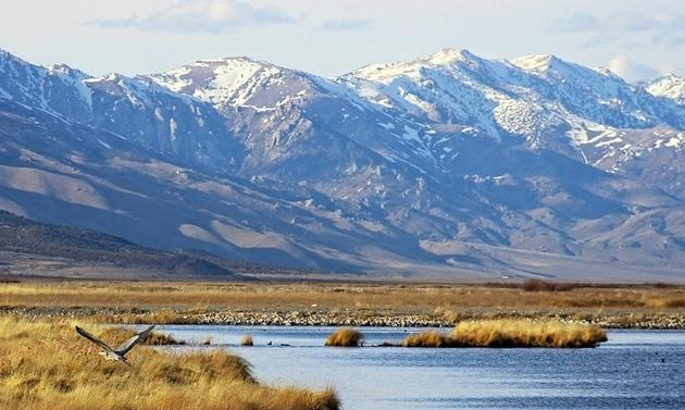 Nevada Tourism awards $983,400 in grants to promote rural Nevada.