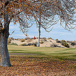 Roadrunner Dunes Golf Course