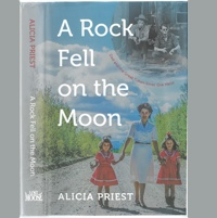 Cover of the book A Rock Fell on the Moon.
