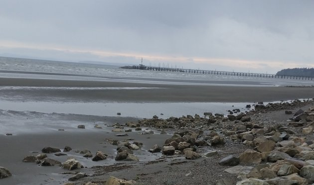 White Rock beach in BC is a must-see