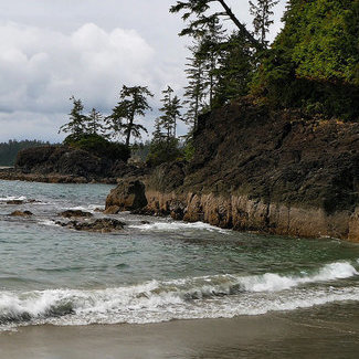 Tofino has beautiful beaches that welcome surfers, swimmers, wildlife photographers and anyone else who enjoys the great outdoors.