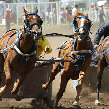 Horse racing is one aspect of culture in Vermilion, but there's so much more to this vibrant community. Photo courtesy Mary Lee Prior