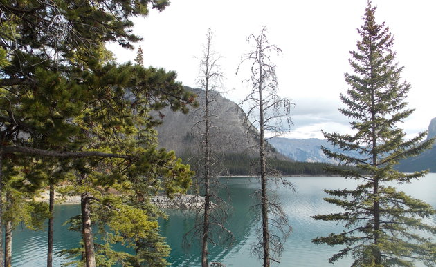 Banff brings incredible photography opportunities.