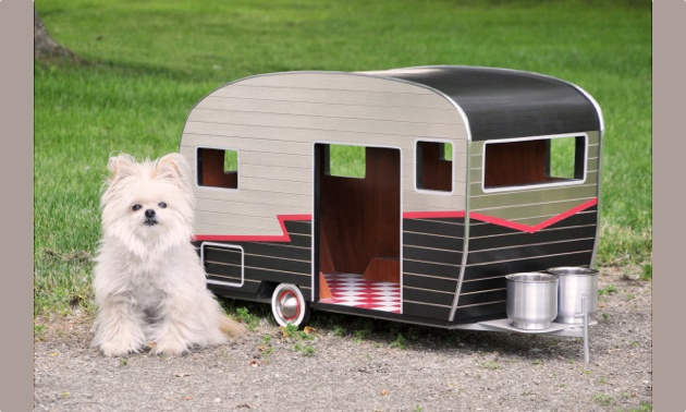 A small white dog sitting outside of a custom made vintage RV.