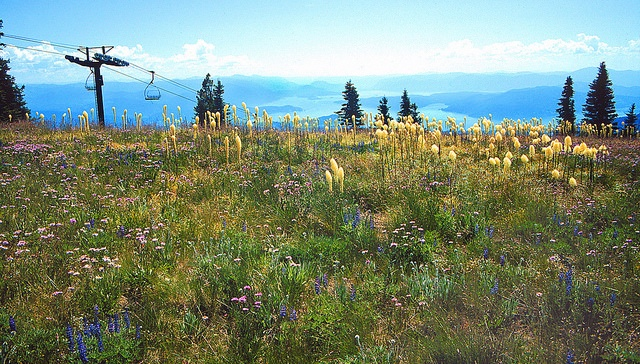 View of Lake Pend Oreille and beyond from Schweitzer Mountain Resort in the summer.