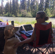 Oetter and Sommerfeld's dog, Kye, looking up at Sommerfeld who is sitting in a lawn chair at Canoe River Campground in Valemount, B.C.
