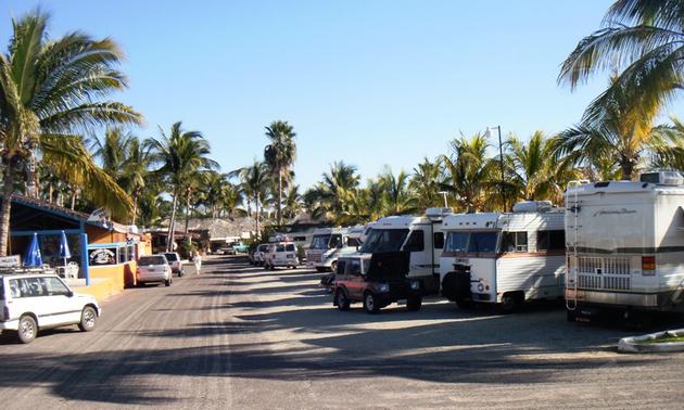 RV resort with palm trees around it