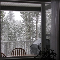 Photo of a winter scene from inside the home.