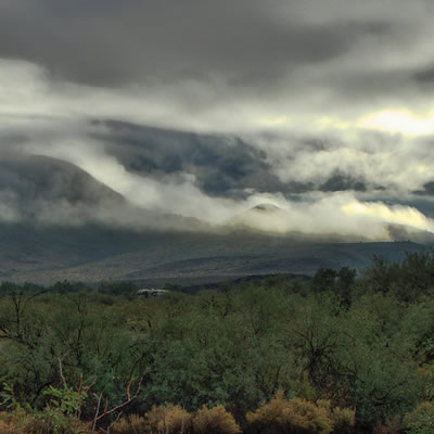 A cloudy morning in Southern Arizona.