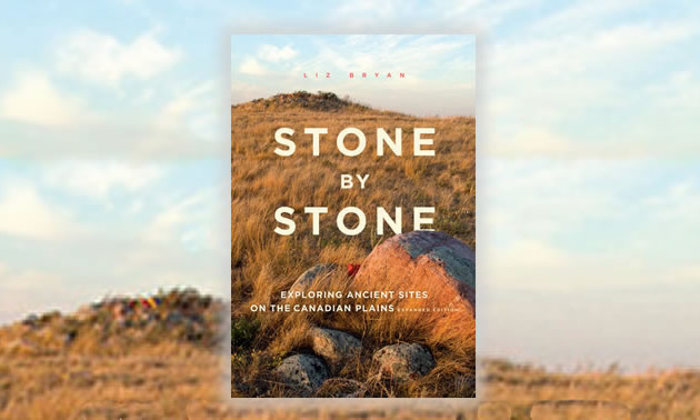 Cover of the book with stones on a prairie grassland