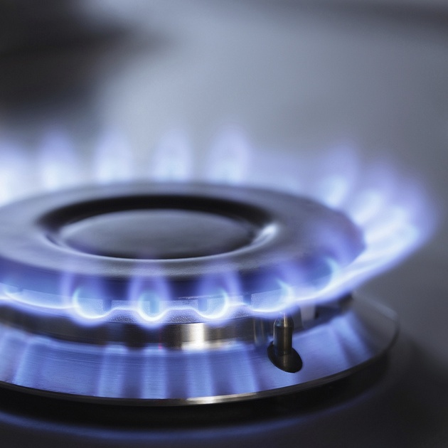 Photo of a lighted gas burner.