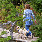 lady walking her dog on a forest trail