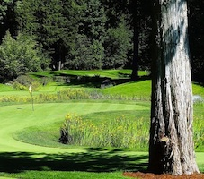 Tap-ins is an 18-hole, par-70 putting course in Cultus Lake.
