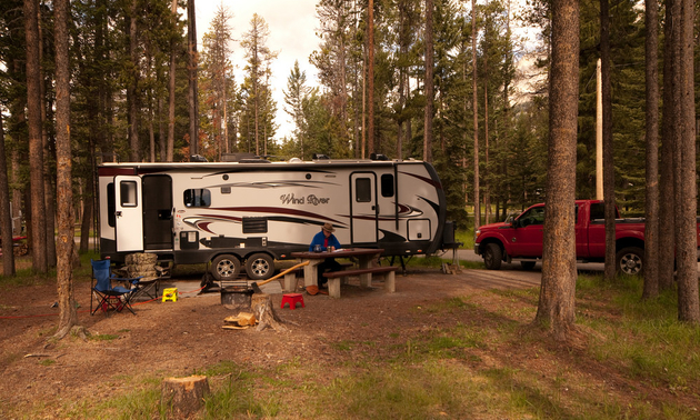 The author's new trailer is much larger, pictured here parked at a campsite in a forest.