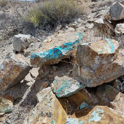 Edley's most recent turquoise discovery in Imperial County. The larger stone weighs 36.7lbs and the smaller stone weighs 21lbs.