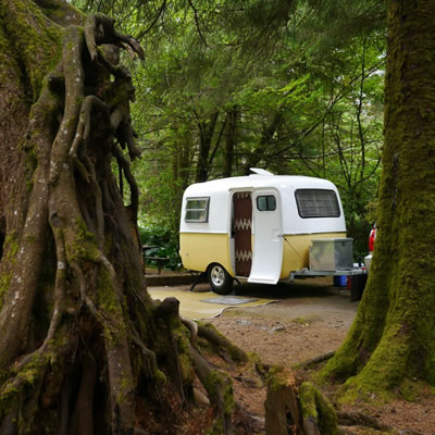 Vintage Boler trailer parked in park with large, towering trees.
